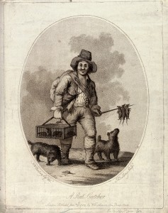 V0020299 A rat-catcher (accompanied by two dogs) carrying a cage of l